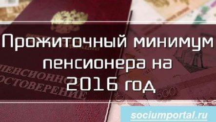 Прожиточный минимум в России в 2016 году