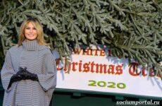 Мелания Трамп радостно встретила появление рождественской ёлки у Белого дома, но мало кто поверил в её искренность