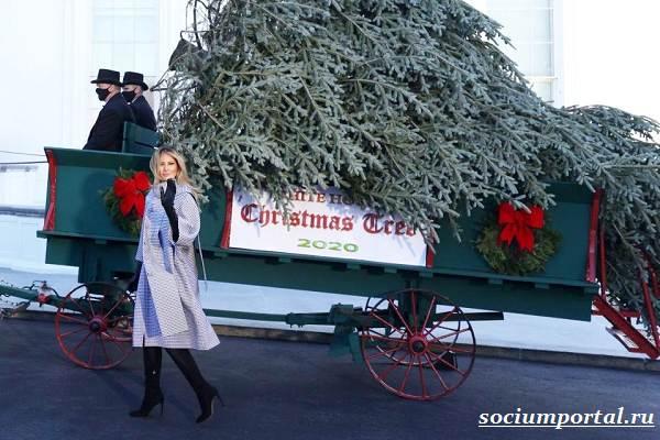 Мелания-Трамп-радостно-встретила-появление-рождественской-ёлки-у-Белого-дома-но-мало-кто-поверил-в-её-искренность-4